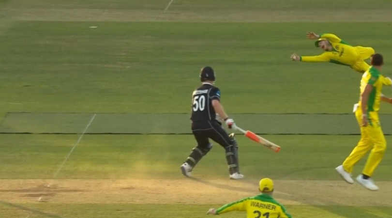 Steve Smith catch vs New Zealand: Watch Smith flies in air to grab one-handed catch to dismiss Tom Latham