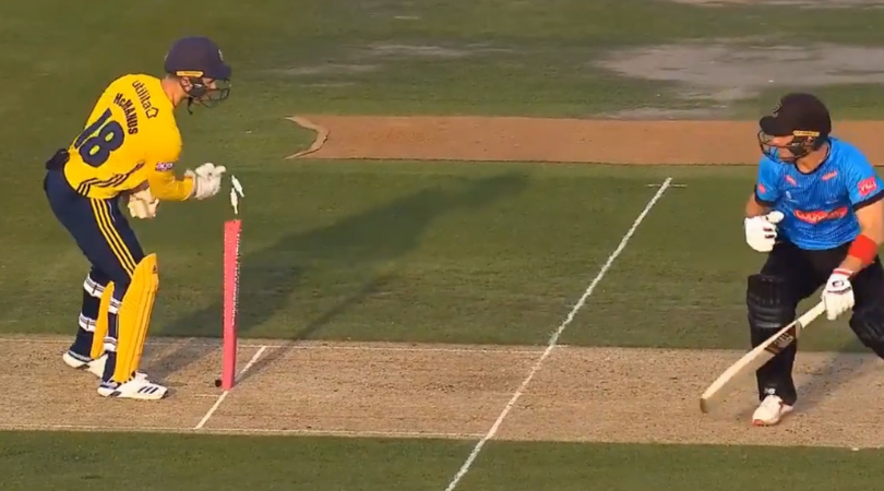 Lewis McManus run-out: Watch Hampshire wicket-keeper runs out Sussex's Laurie Evans in bizarre fashion