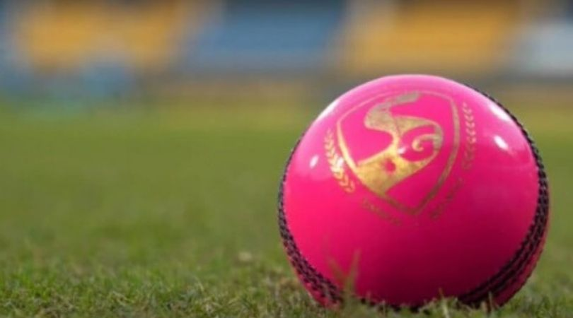 Why pink ball for day-night Test: How is pink ball made and how is it different from red ball?