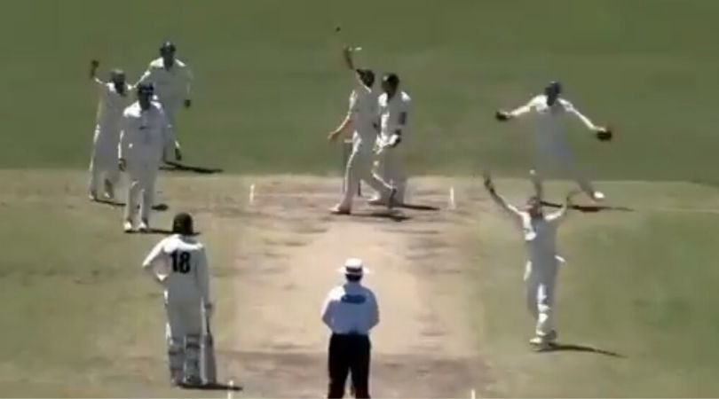 WATCH: Steve Smith dismisses Josh Inglis in atypical manner in Sheffield Shield