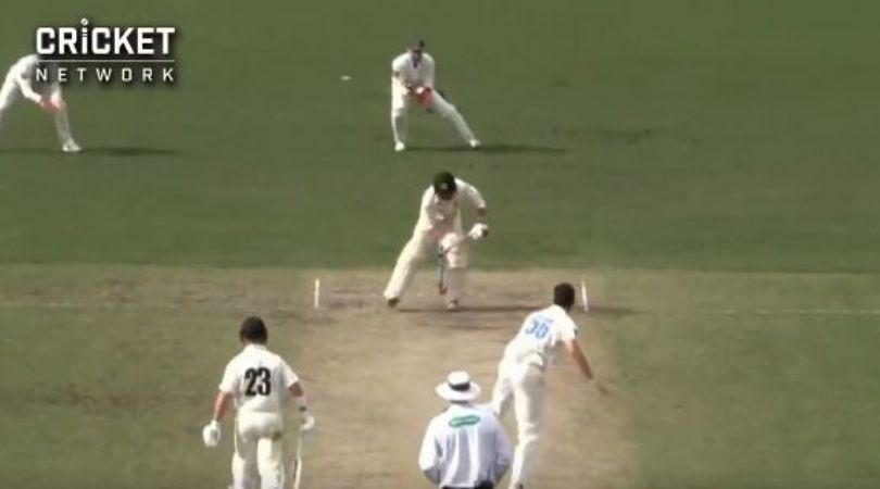 Mitchell Starc's mystery ball makes four point contact before dismissing batsman