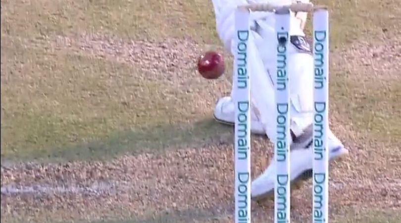 WATCH: David Warner survives dismissal as bails don't fall despite touching stumps in Gabba Test