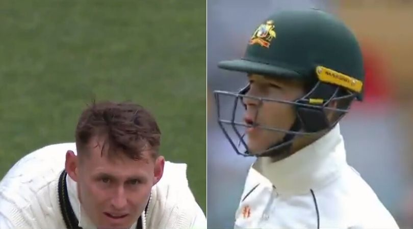 WATCH: Tim Paine and Marnus Labuschagne involved in hilarious exchange in Adelaide Test