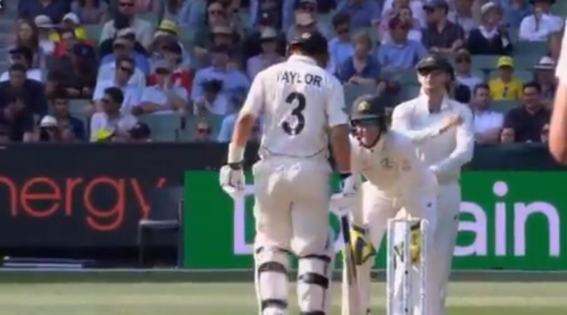 """""""He knows the bloke in the truck"""": Tim Paine sledges Ross Taylor at MCG"""