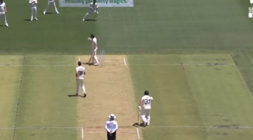 WATCH: Tim Southee fires throw at Joe Burns in Perth Test; David Warner objects