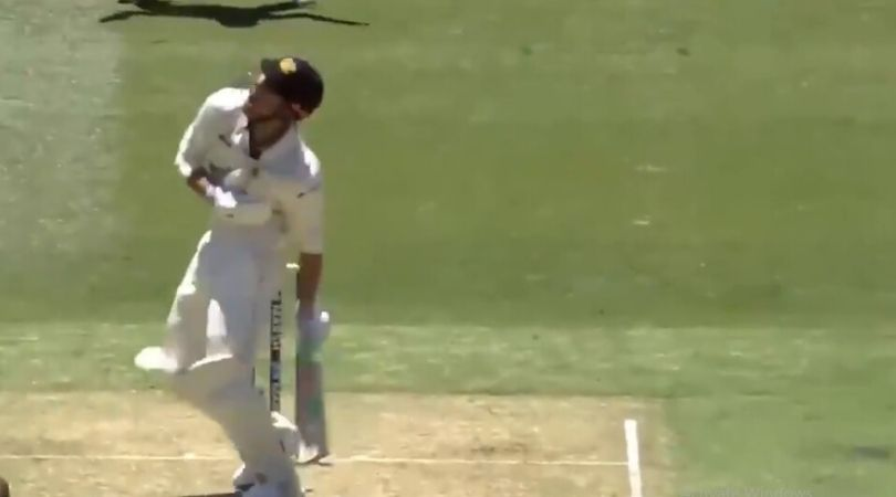 WATCH: Shaun Marsh and Marcus Stoinis get brutally hit as play gets abandoned at the MCG
