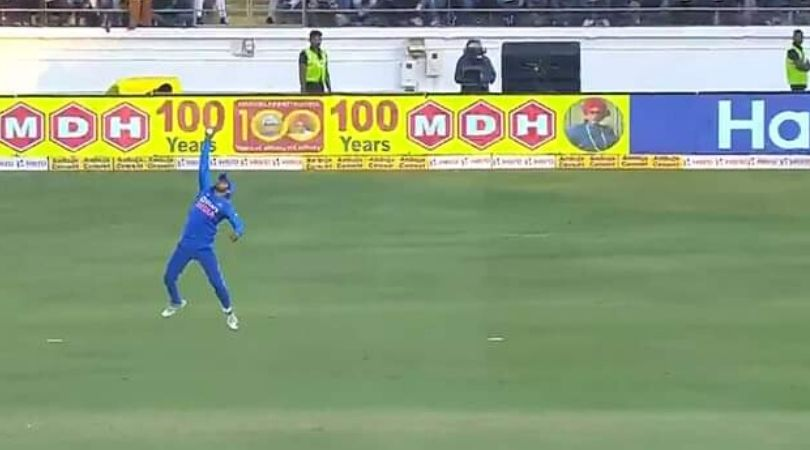 WATCH: Manish Pandey grabs one-handed screamer to dismiss David Warner in Rajkot ODI