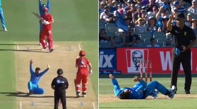 WATCH: Rashid Khan falls down hilariously while appealing Beau Webster in BBL 2019-20
