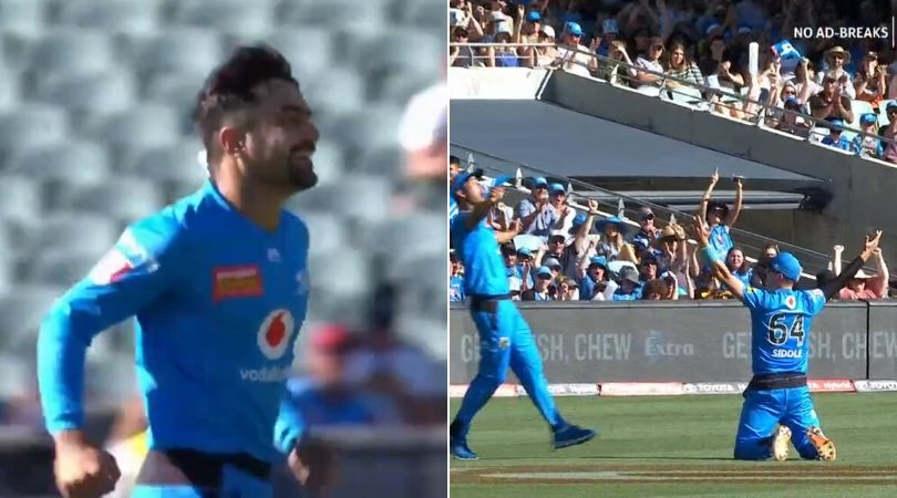 WATCH: Rashid Khan dismisses Mohammad Nabi as Peter Siddle grabs incredible catch in BBL 2019-20