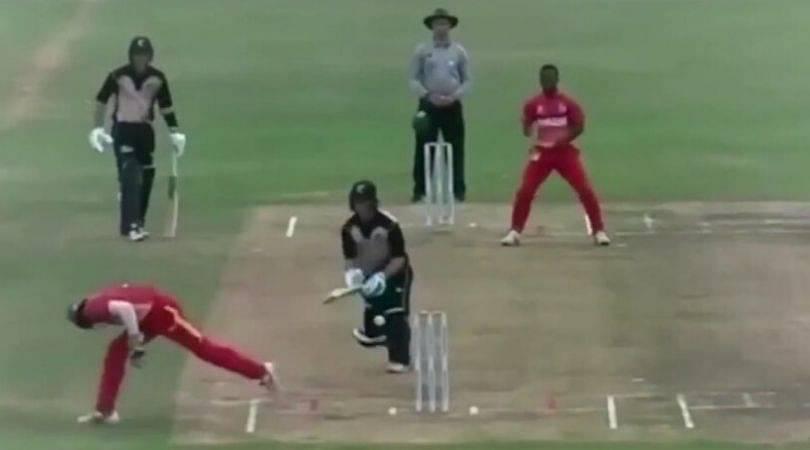 WATCH: Dane Schadendorf affects magnificent stumping in Zimbabwe vs New Zealand U-19 Quadrangular series match