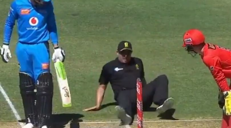 WATCH: Umpire Shawn Craig slips after setting the bails in Strikers vs Renegades BBL match