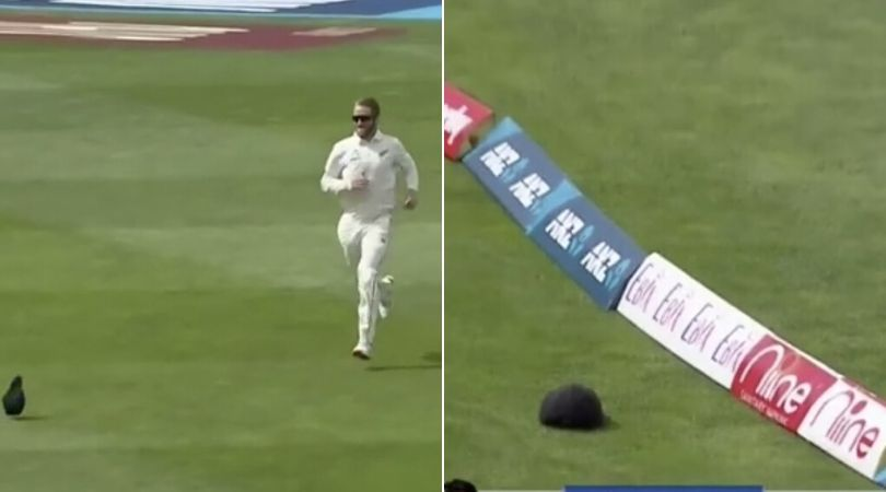 WATCH: Kane Williamson amusingly chases cap to the boundary in Wellington Test