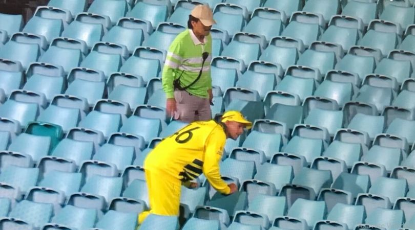 WATCH: Ashton Agar looks out for ball in empty stands during AUS vs NZ Sydney ODI