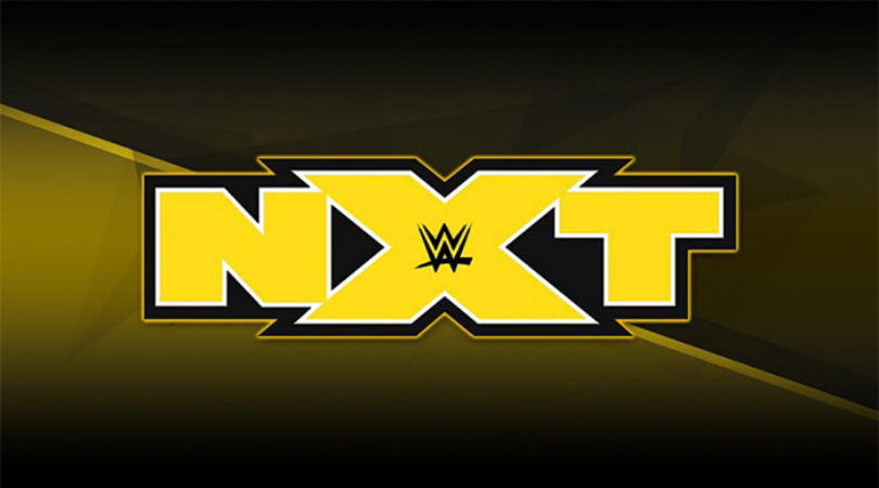 Several WWE Superstars are open to moving to NXT