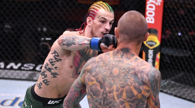 Watch Sean O'Malley stuns everyone with one punch, walk off knockout