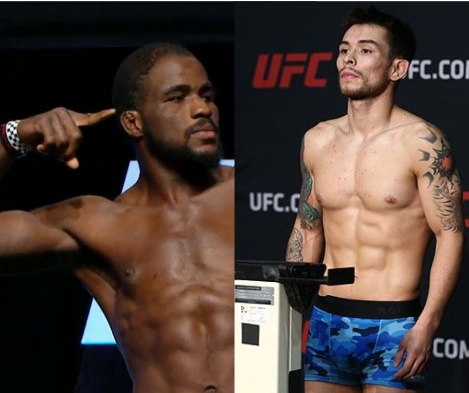 UFC News: Corey Anderson and Ray Borg are Released By UFC