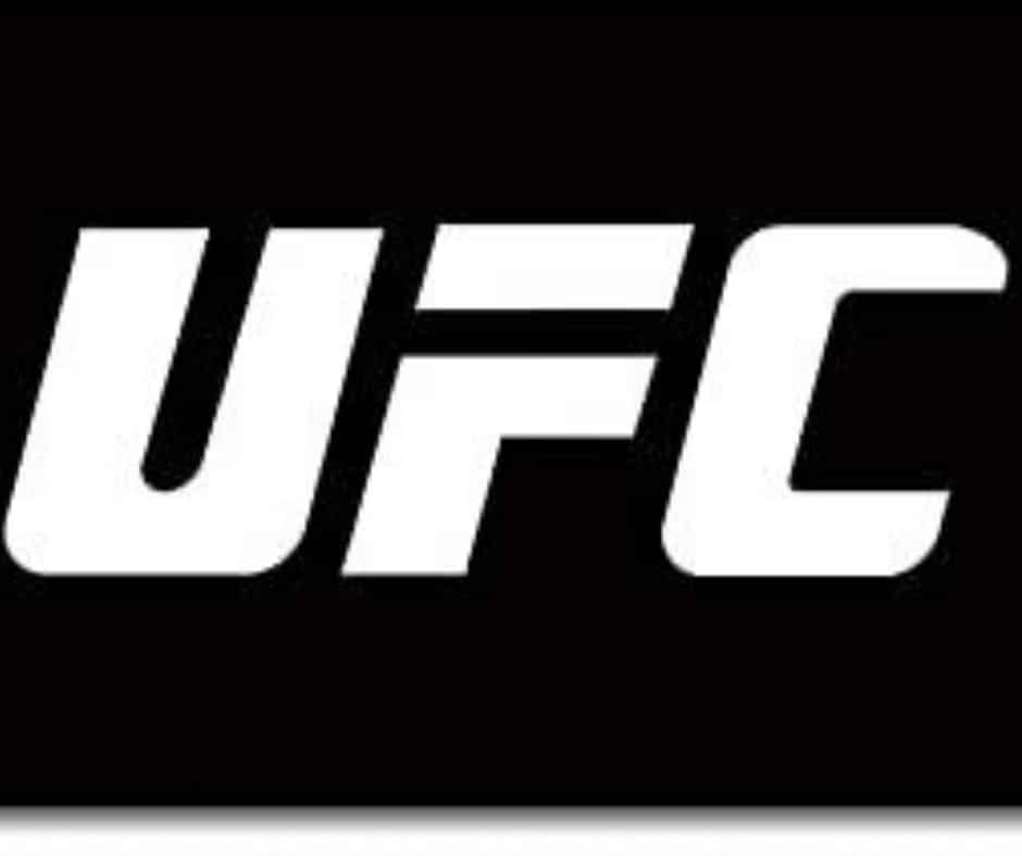 UFC Worth: How Much Does The Company Worth In 2020?