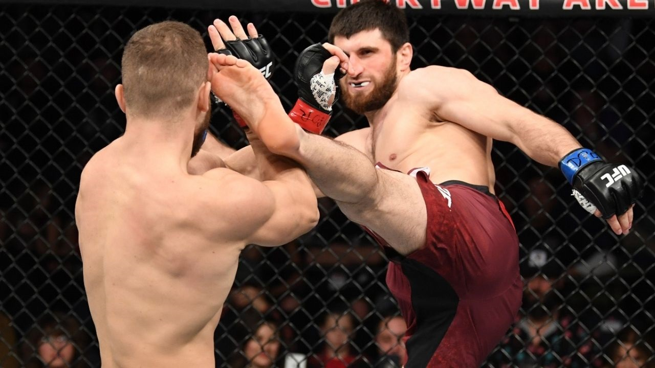 UFC 254: Magomed Ankalaev Goes 2-0 Up Over Ion Cutelaba. Watch The Incredible Knockout Blow By The Russian