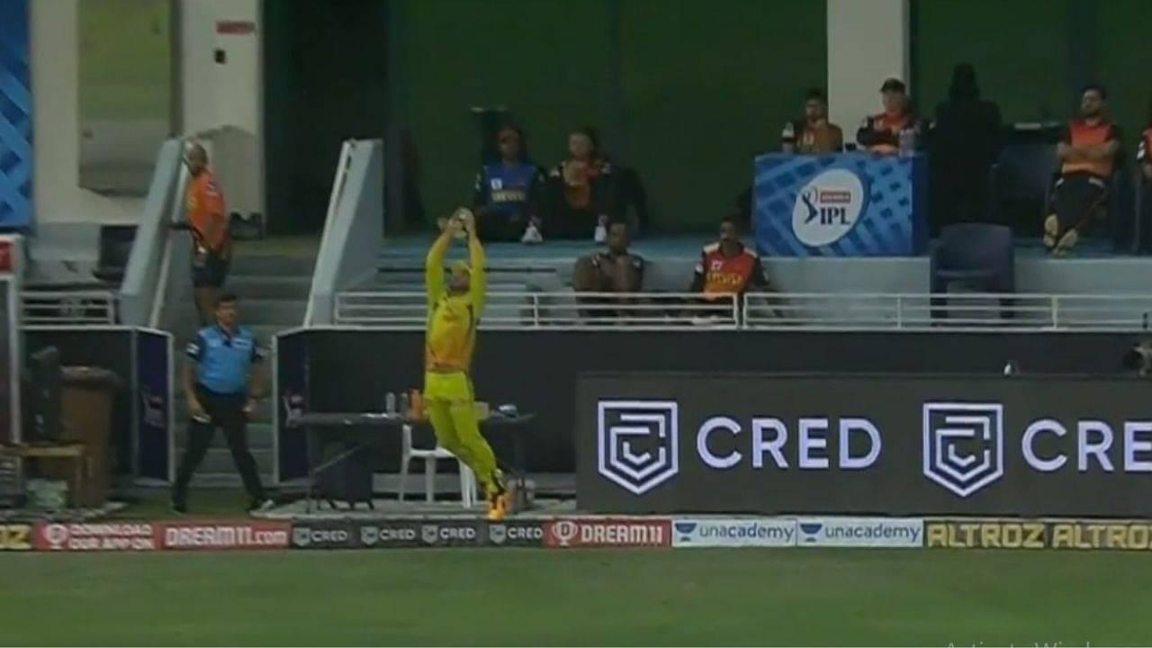 Faf du Plessis catch vs SRH: Watch CSK fielder grabs superb catch to dismiss David Warner