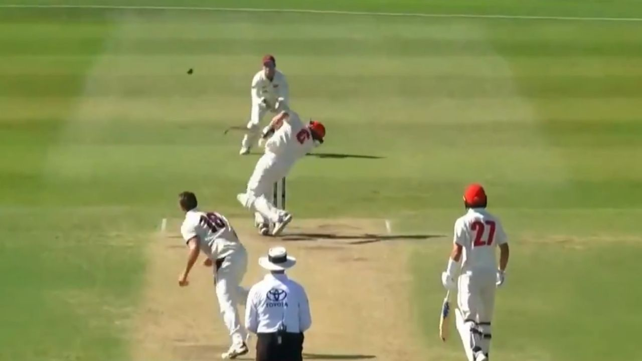 Sheffield Shield 2020-21: Liam Scott shoulders arms to Mark Steketee delivery after coping nasty bouncer
