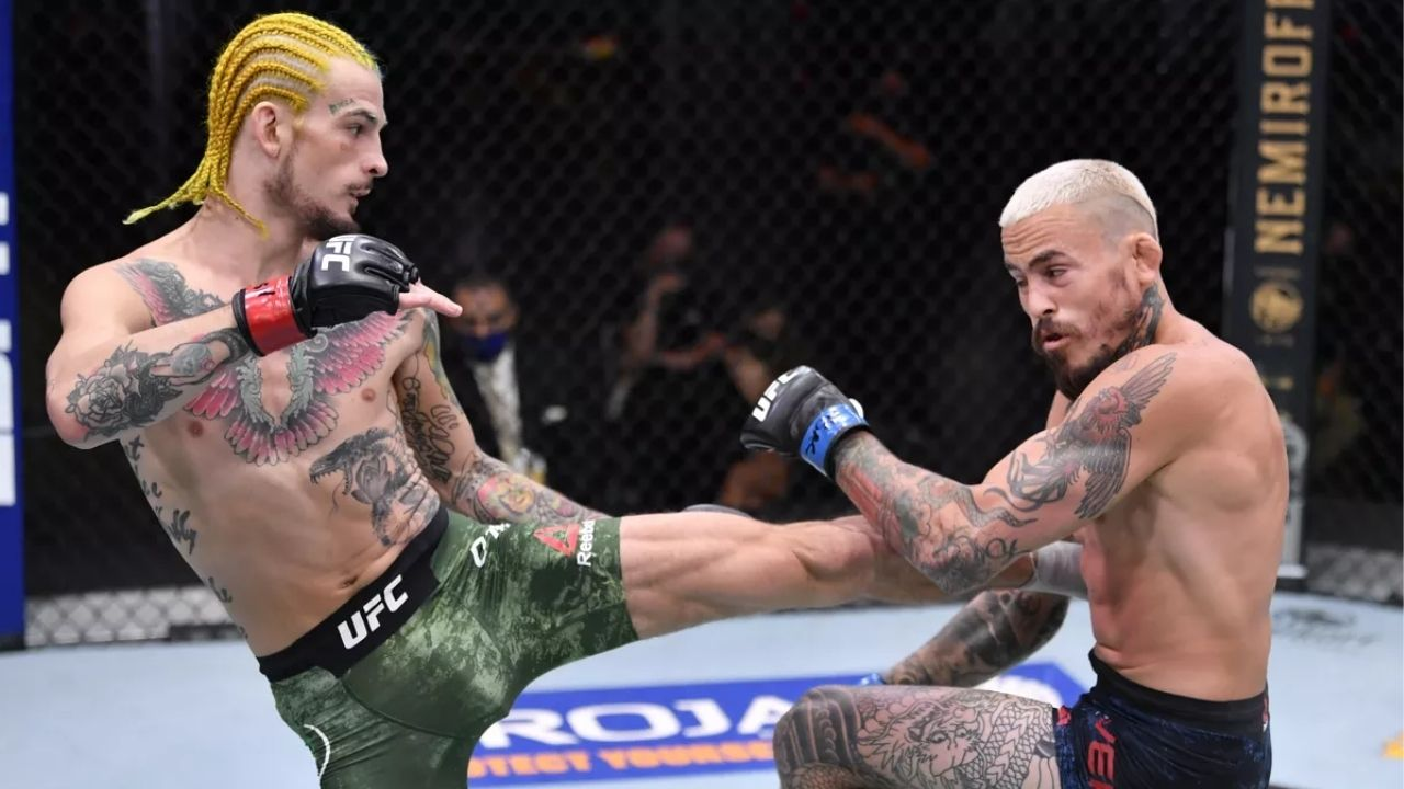 'I feel like I'm just a different level fighter': Sean O'Malley reveals why he is not interested in a rematch with Marlon Vera