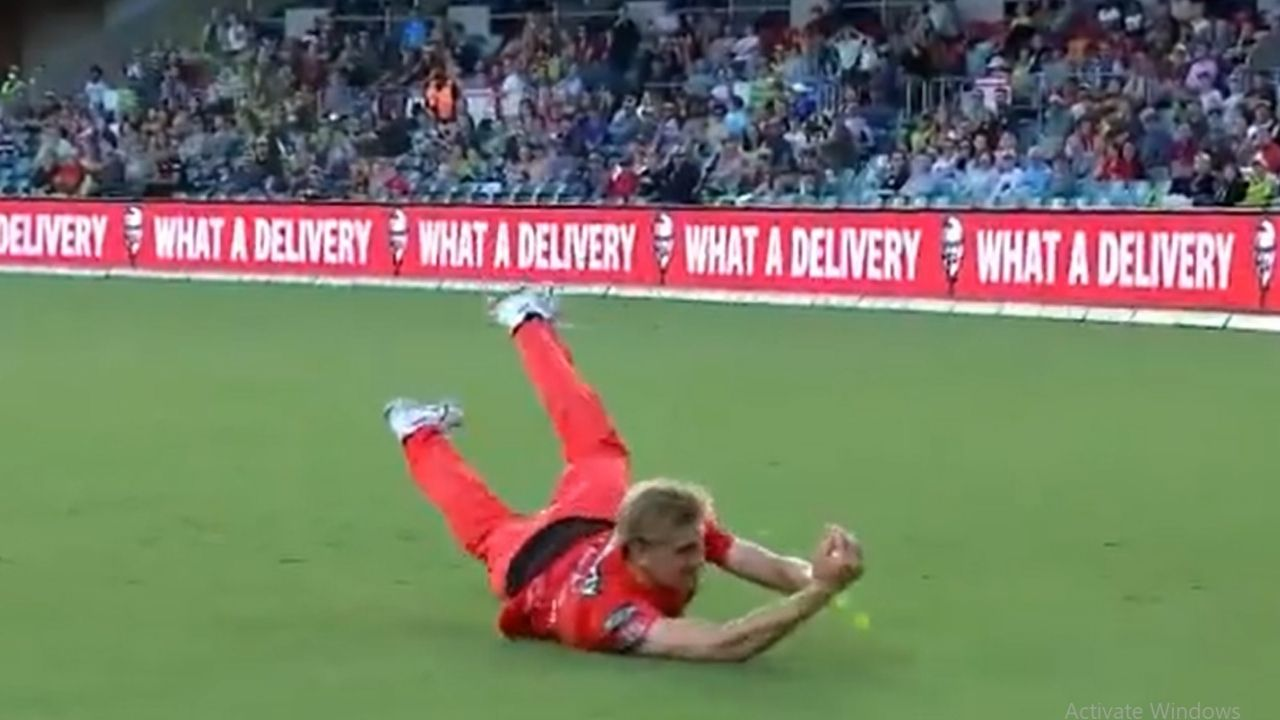 Will Sutherland catch today: Renegades pacer grabs sensational catch to dismiss Callum Ferguson in BBL 10