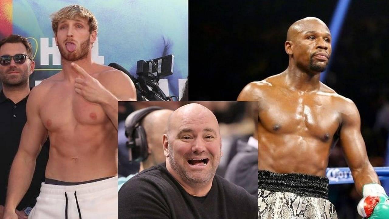Floyd Mayweather Vs Logan Paul Dana White Once Again Criticizes The State Of Boxing The Sportsrush