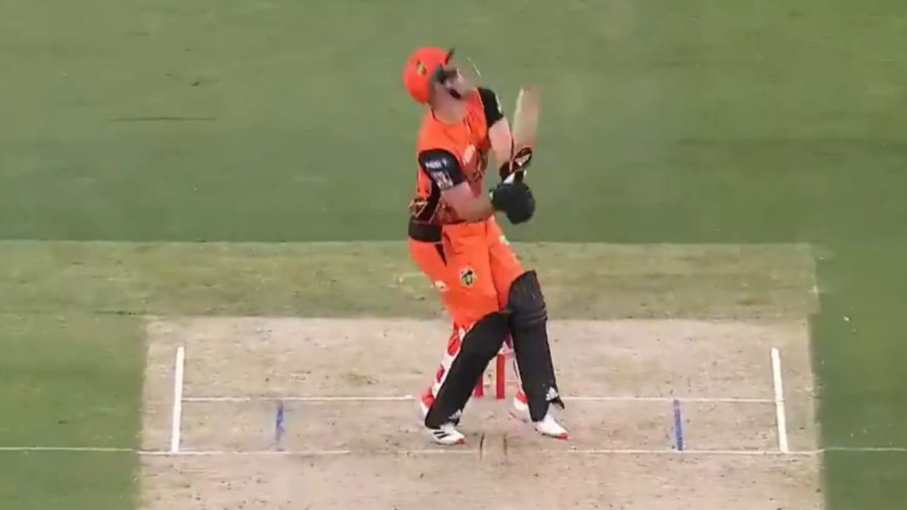 Livingstone cricketer: Perth Scorchers' Liam Livingstone yells after getting hit in the abdomen in BBL 10