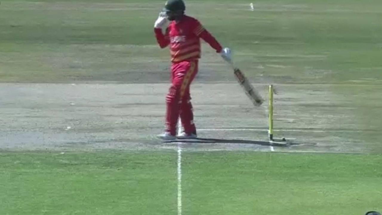 Brendan Taylor hit-wicket vs Bangaldesh: Zimbabwean captain's unusual dismissal in Harare ODI sparks debate